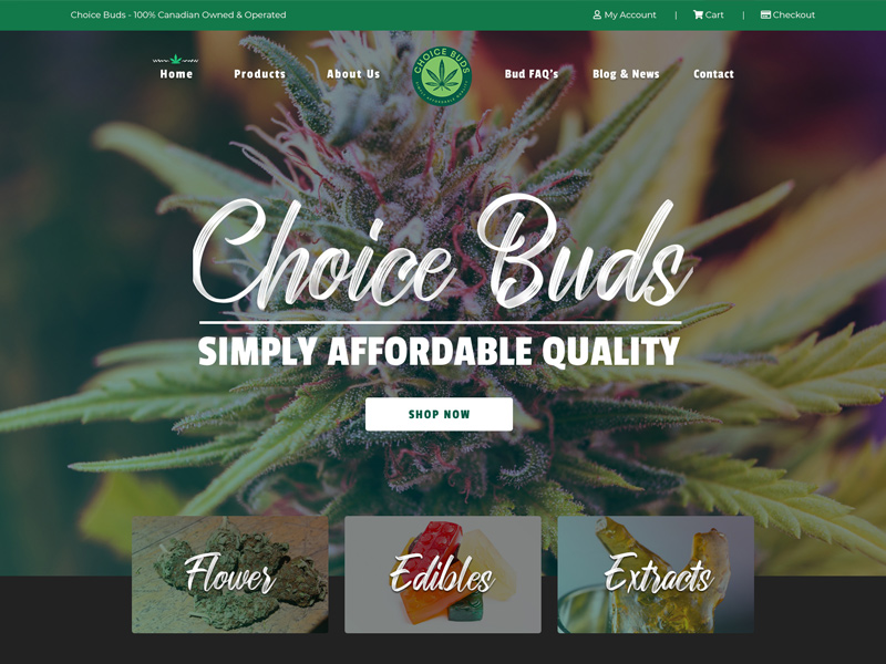 Choice Buds